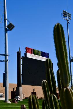 The Cuctus Stadium