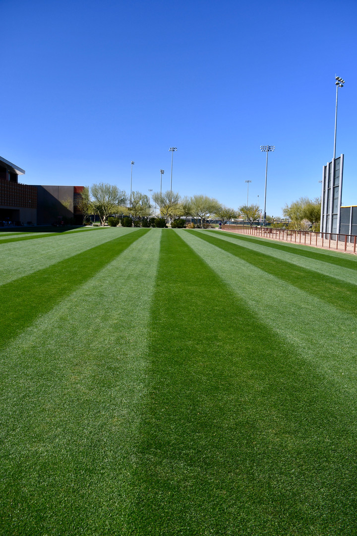 Agility Field