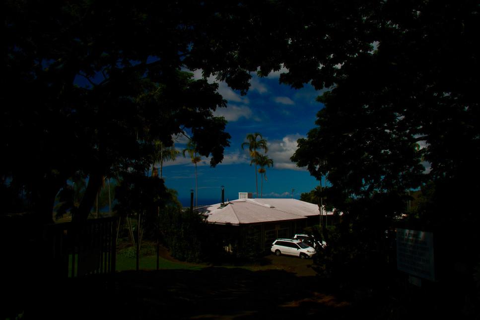 UCC Hawaii kona Coffee Estate