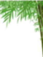 Bamboo Bambu