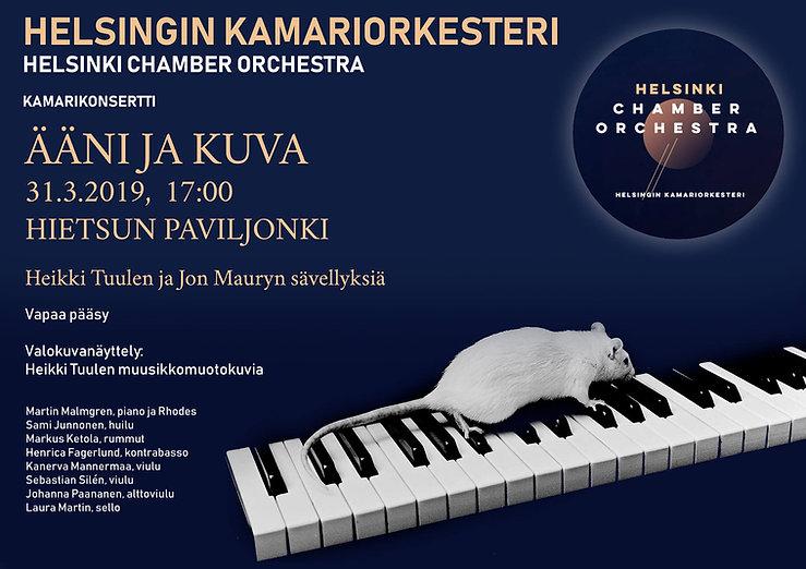 Heikki Tuulen konsertti.jpg