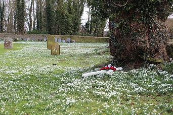 Chelveston Snowdrops 3 Feb 21.JPG