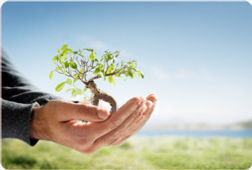 responsabilidade-ambiental-1.jpg