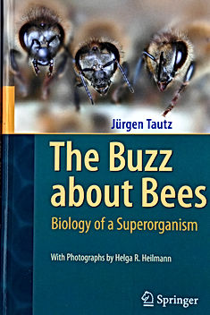 A book - The Buzz about Bees.jpeg