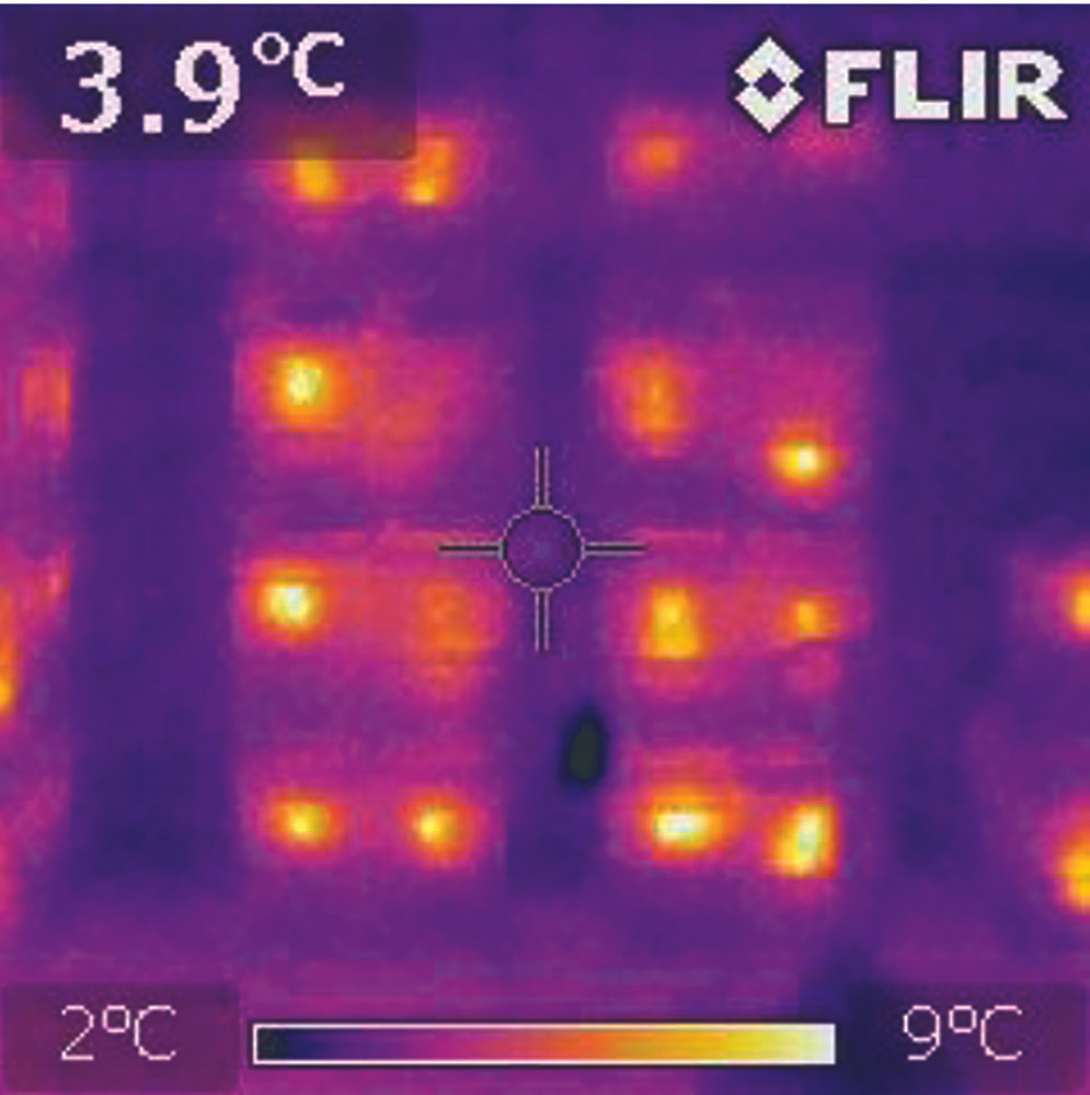 An infrared camera shows the heat generated by honeybees in winter - much hotter than the outside temperature