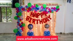 Organic Mini Theme Home Balloon Decoration