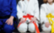 martial arts kids with belts on in row