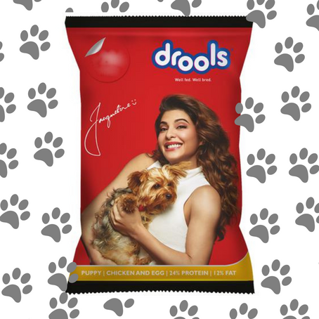 Drools Dog Food Price In India