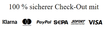 100 % sicherer Check-Out.png