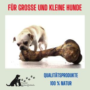 Update 1. Werbevideo Haustier-Schlaraffenland.mp4