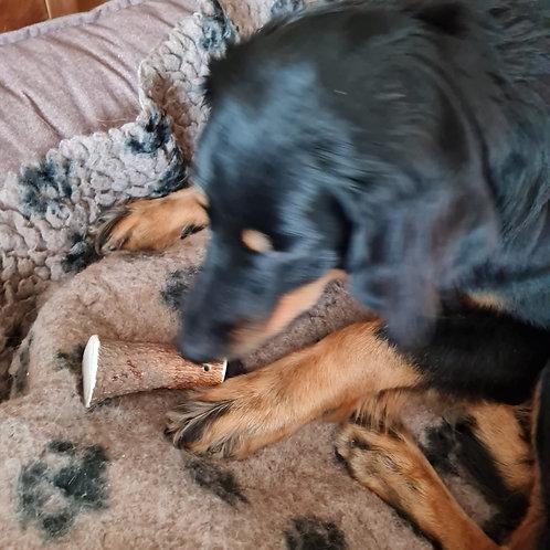 Hirsch-Geweih, Hunde-Kauartikel, Hunde-Kau-Snack, Leckerchen, Trockenkauartikel, Belohnungshappen
