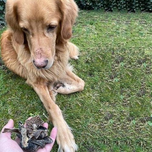 Hirsch-Pansen, Hunde-Kauartikel, Hunde-Kau-Snack, Leckerchen, Trockenkauartikel, Belohnungshappen