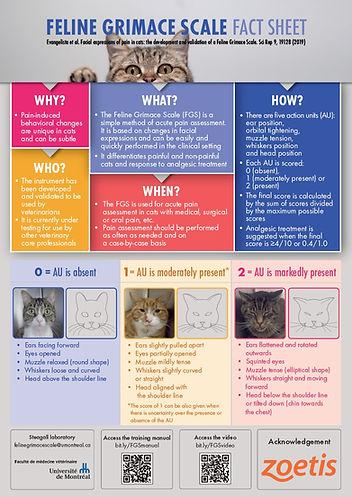 Figure Fact sheet_English.jpg