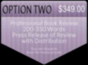 Order a Professional Book Review with Press Release 349.00