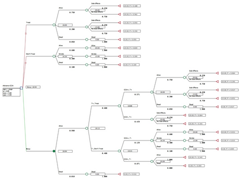 • Decision Tree to Recommend the best Strategy to Advance Life Expectancy for Advanced GCA