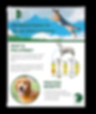 download pro-stride canine brochure