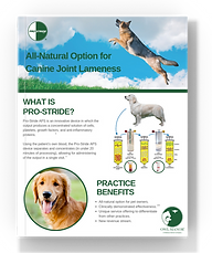 download pro-stride canine brochure