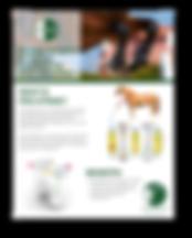 download pro-stride equine brochure