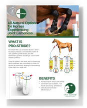 download pro-stride equine brochure