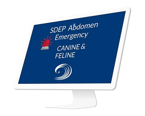 SDEP® Abdomen Emergency: Canine & Feline