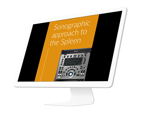 Sonographic Approach to the Spleen