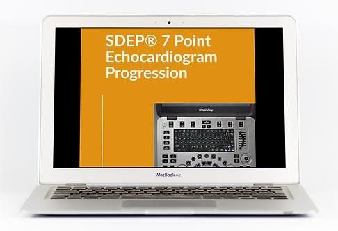 SDEP® 7 Pt. Echo Progression Download
