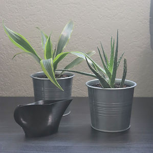 3D printed plant watering pitcher