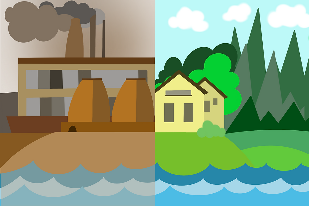 Water and air pollution effects on the environment