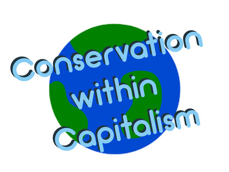 Conservation within Capitalism: Environmental Conservation and the Business Landscape