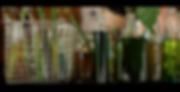 Screen Shot 2020-05-31 at 7.55.39 PM.png