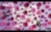 Screen Shot 2020-06-02 at 1.25.43 PM.png