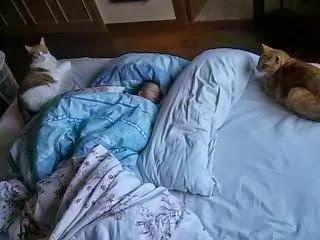 Miedos noctunos (8 a 12 años)