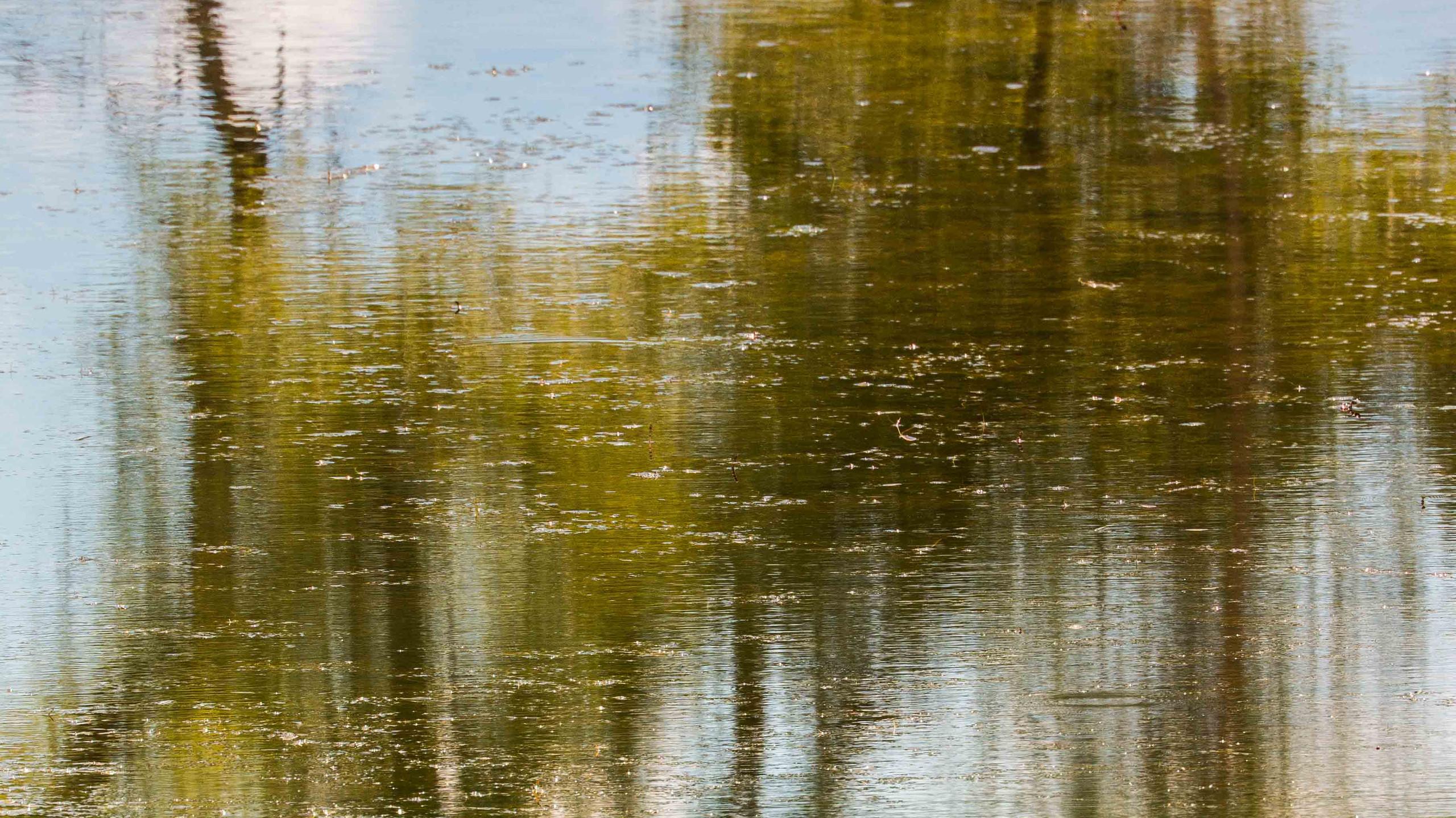 Reflection on Heningers Reservoir