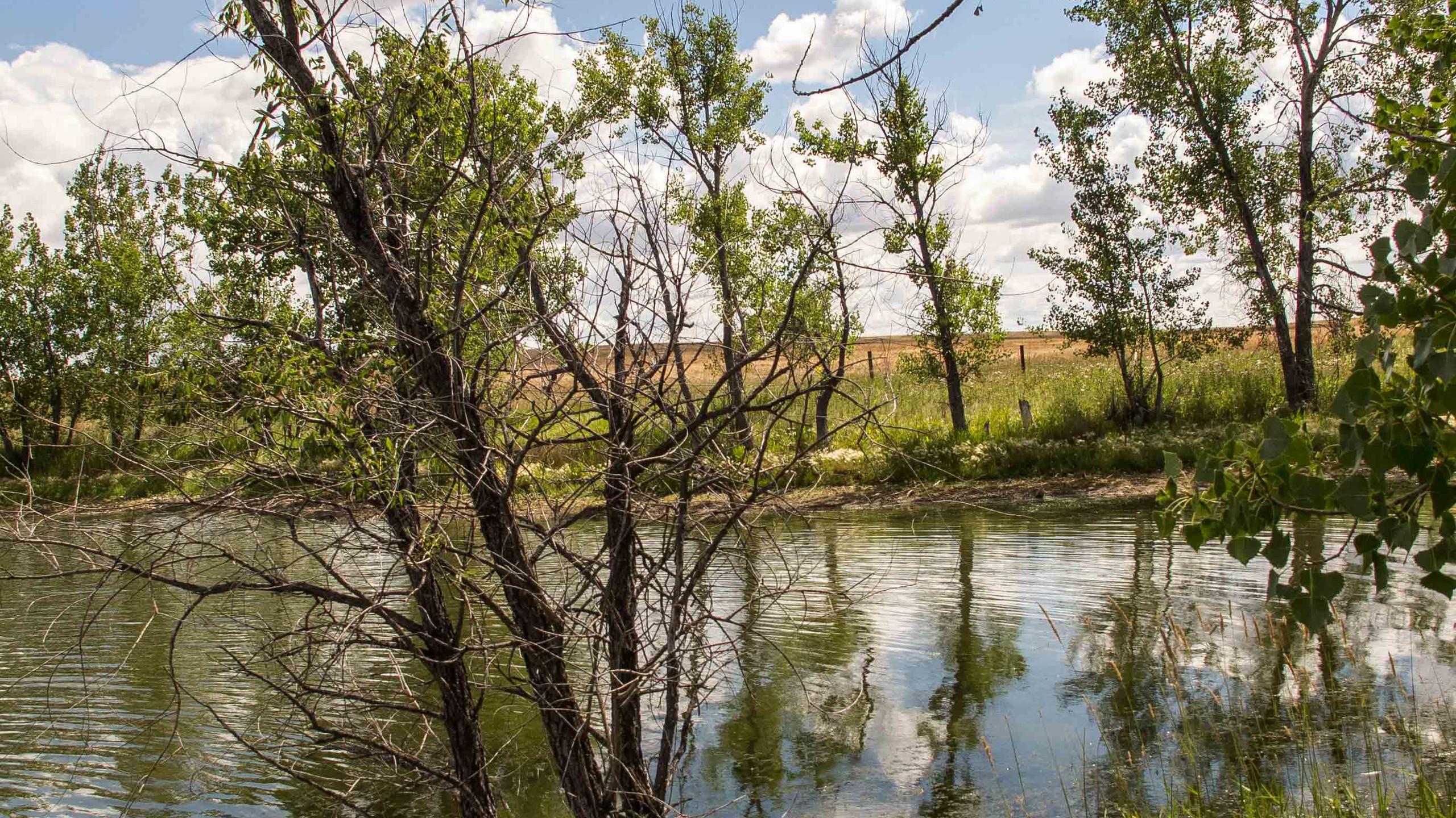 Heningers Reservoir