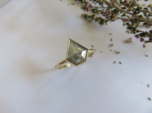 Light Grey Kite Salt and Pepper Diamonds in 9ct Gold Ring