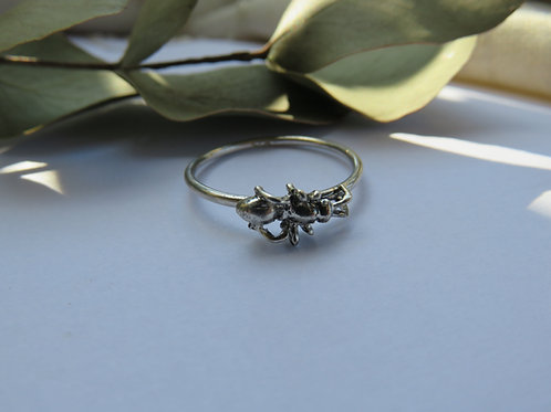 Sugar Ant Ring