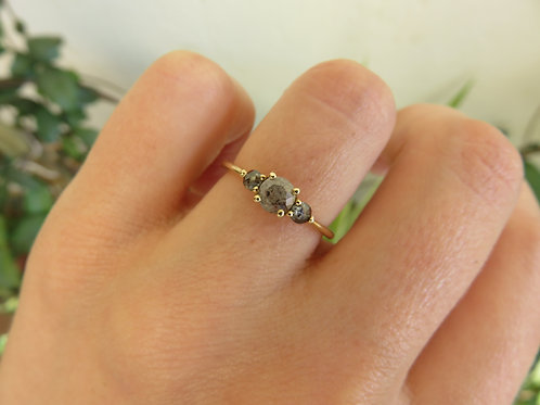 Trio Salt and Pepper Diamonds in 9ct Gold Ring