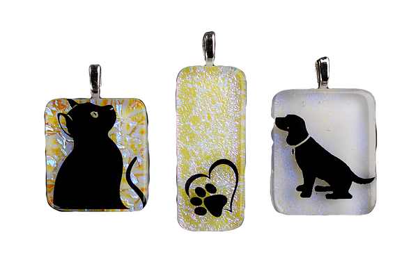 Pets%20and%20Paws_edited.png