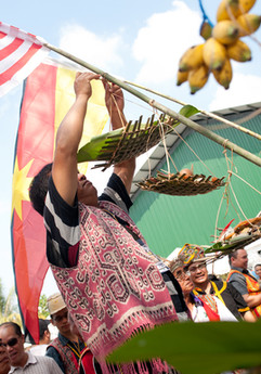 An indigenous Iban blessing ceremony known as miring in Sarawak.