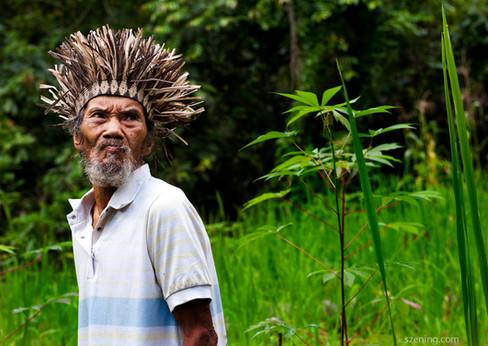 An Orang Asli Temiar man in his swidden.
