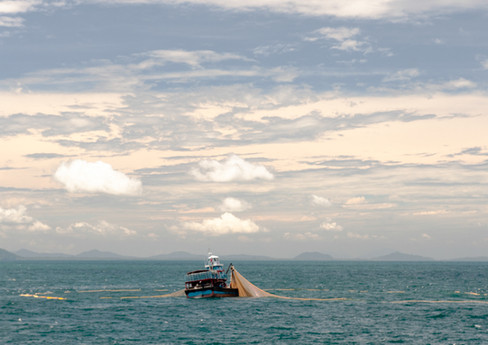 An anchovy purse seiner off the coast of Kedah, Malaysia.