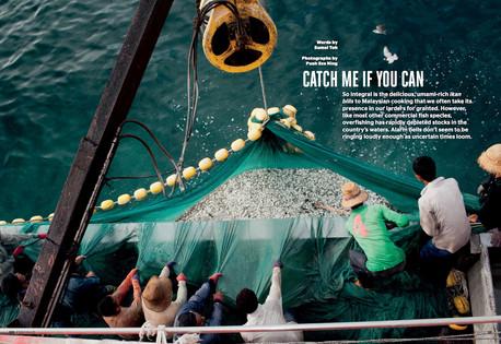 FEATURE Ikan Bilis_ESQMYdec12pg1 (web res).jpg