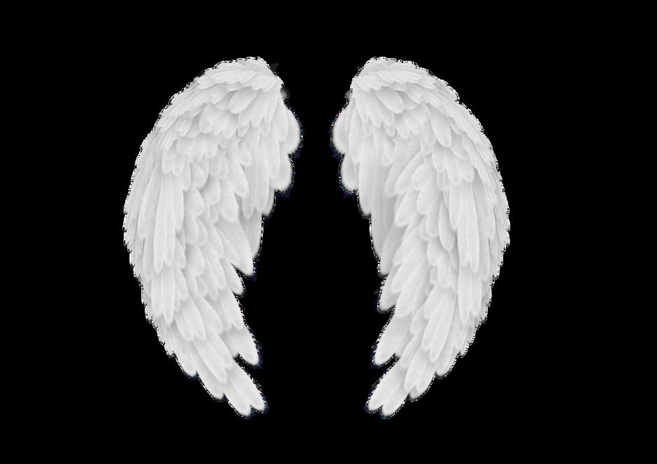 Gardian Angels Vs. Guides