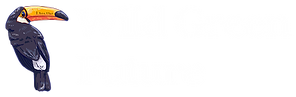 Logo with Name for Website.png