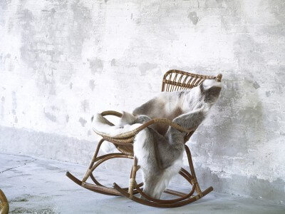 ROCKING CHAIR - Fauteuil
