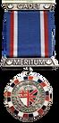 Médailles_anavets_sans_fonds.png