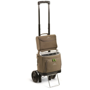 SimplyGo Accessory Bag