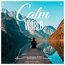 Calm The World