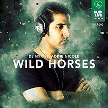 DJ NYK - Wild Horses (Original Mix)