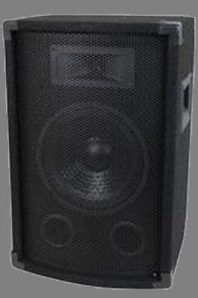 """400 Watt 10"""" PA/DJ Speaker"""